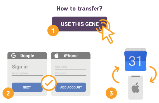 Transfer Google Calendar to iPhone